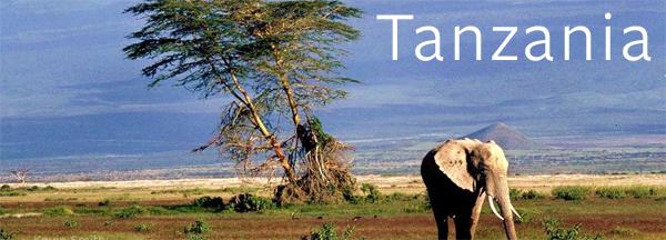 tanzania-summer-project